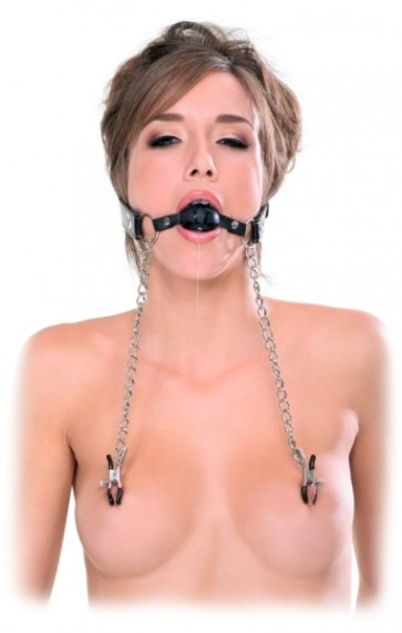 FFE DEluxe Ball Gag and Nipple