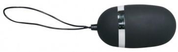 Velvet Remote Control Egg
